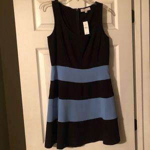 Women's size 6 loft dress